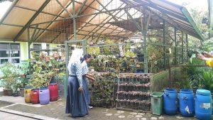 Dua Siswa sedang merawat tanaman Green house di lingkungan SMAN 1 Margahayu
